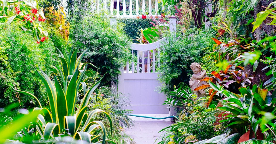 garden3-960x500