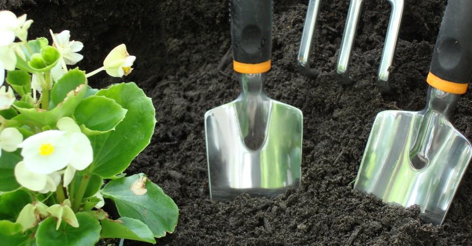 DIY Organic Fertilizer for your Garden