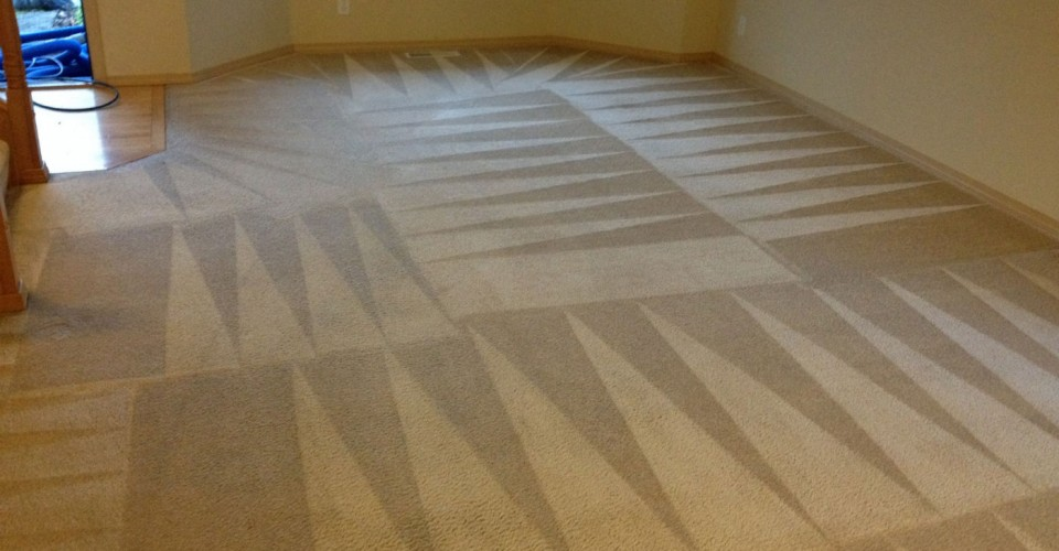 Budgeting For Carpet Installation