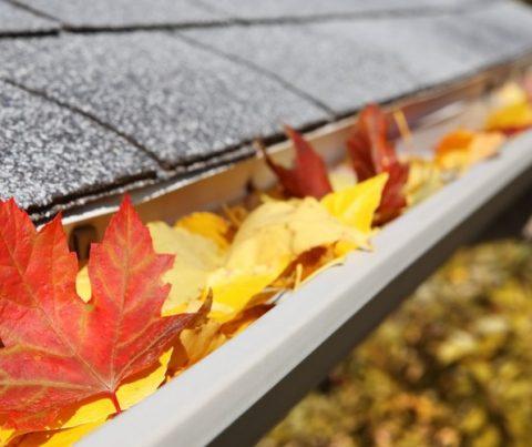 September Home Maintenance Guide