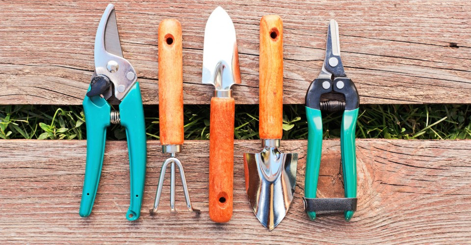 Gardeners 10 ways to beat the winter blues laurie march for Common garden hand tools