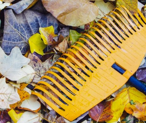 October Home Maintenance Guide