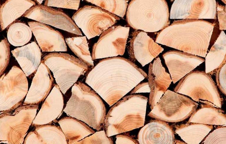 firewood-003-900x500