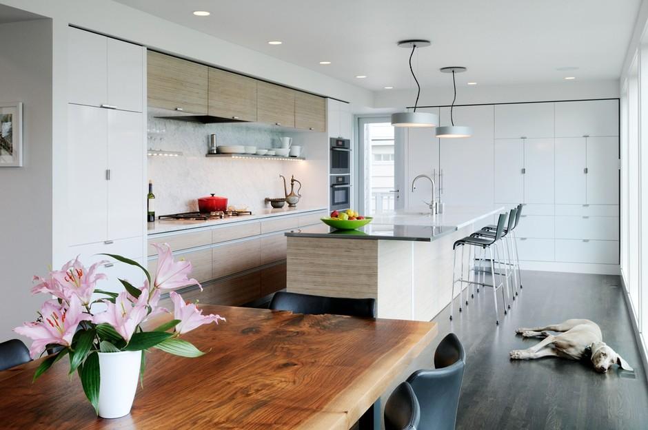 Coop 15, PC - Weimariner in kitchen