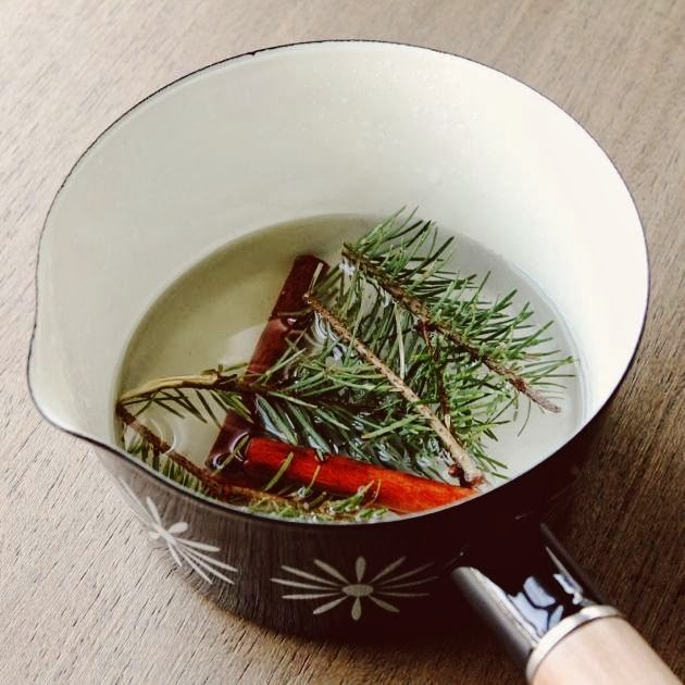 Make + Haus - DIY Holiday Simmer Pot