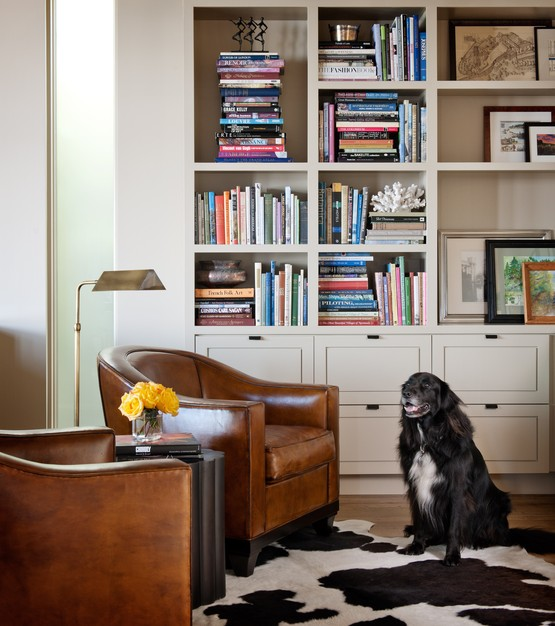 NB Design Group - dog spots