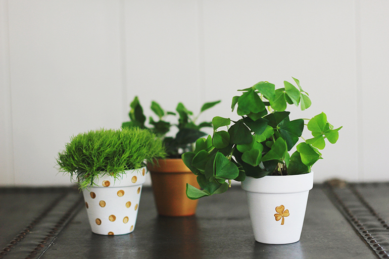 The Merry Thought St. Patrick's Day DIY clay pot planters