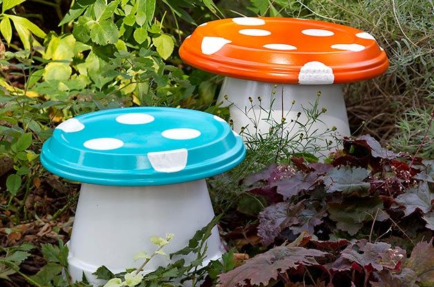 Birds and Blooms - toadstools