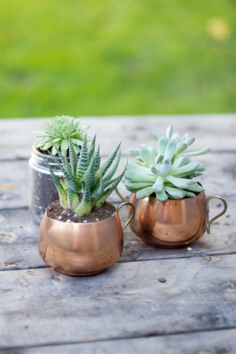 Bluebird Kisses vintage copper container planters
