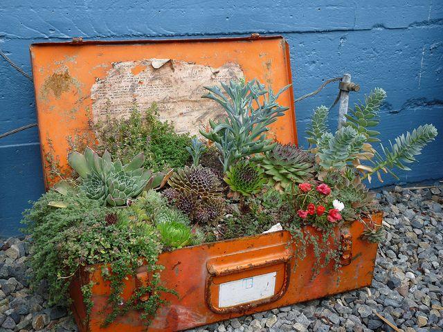 Curbshopaholic - planter suitcase DIY