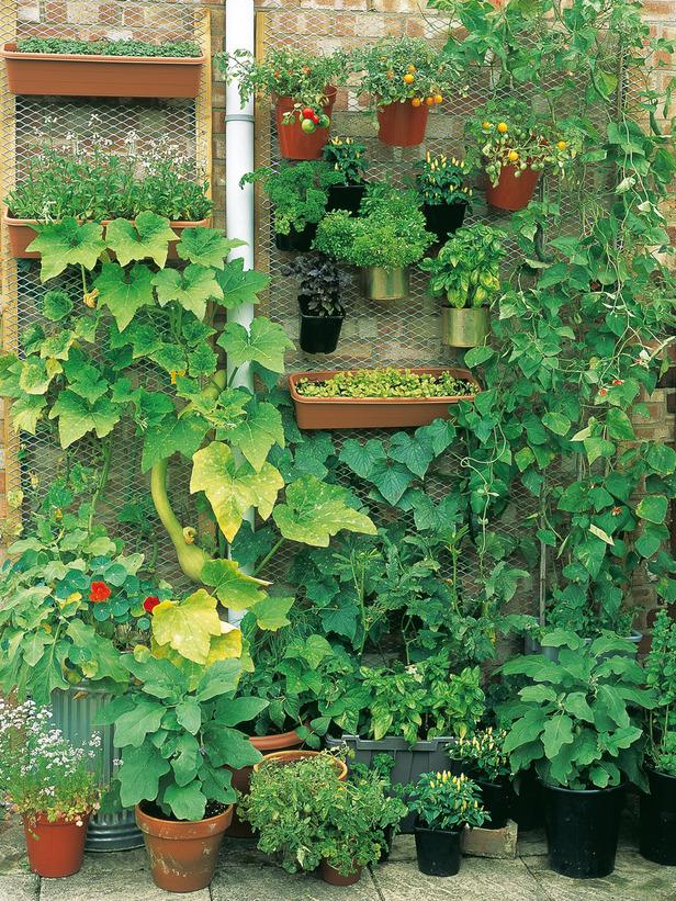 Plant the perfect small space garden with these 8 crafty for Vertical garden planters diy
