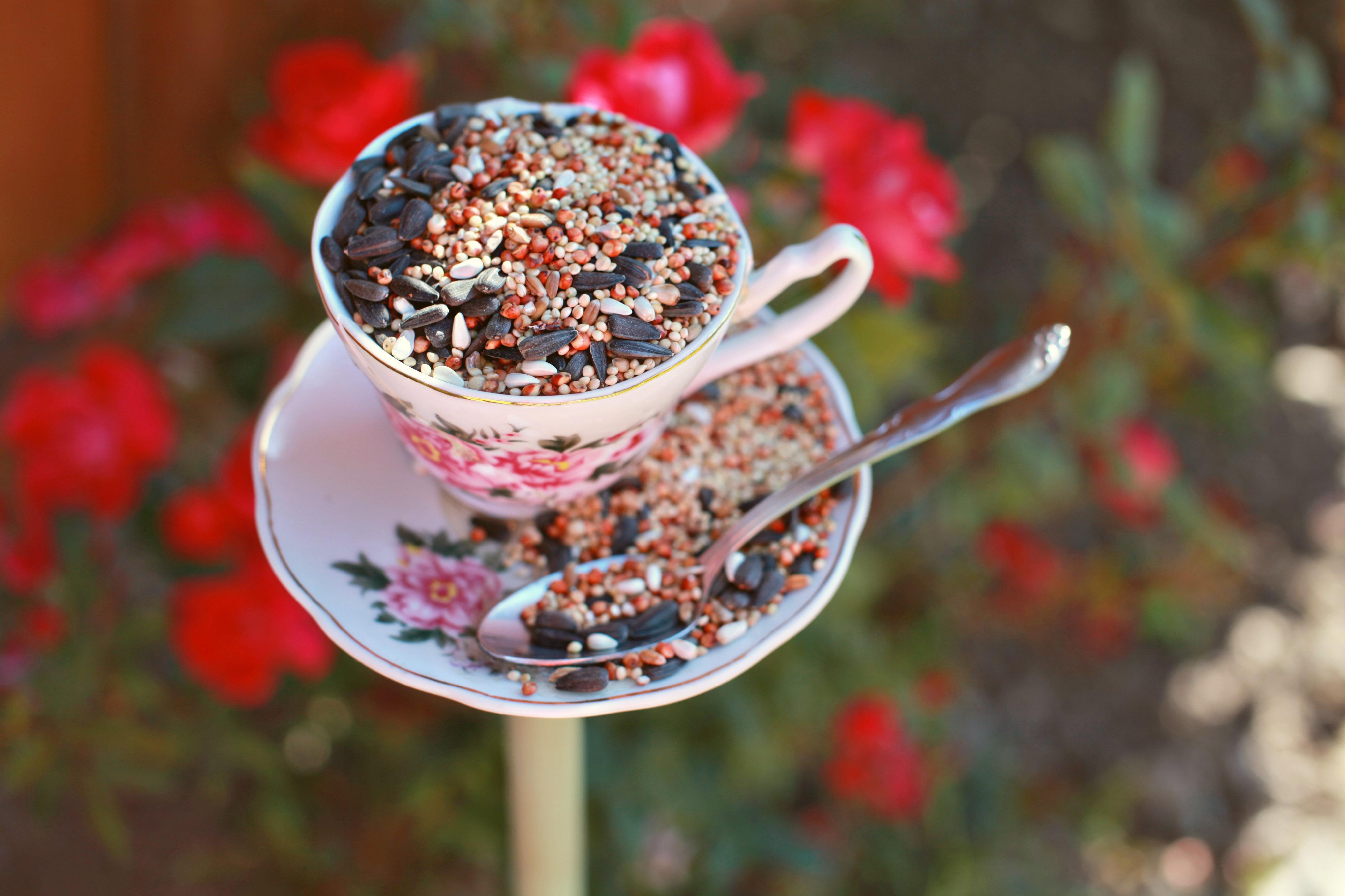Dear Lizzy - tea party bird feeder