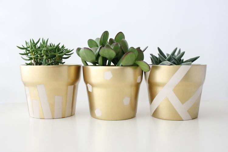 Delia Creates DIY gold gilded succulent potted plants