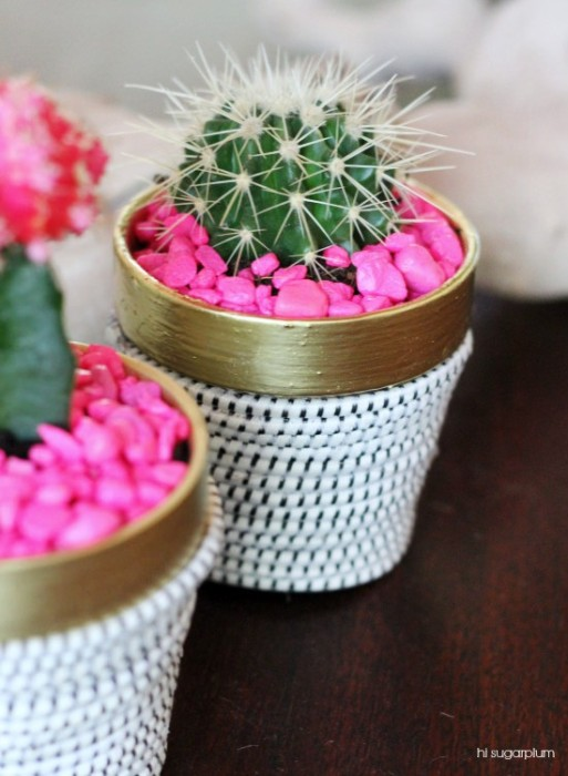 Hi Sugarplum DIY succulent plant in terracotta pot wrapped in rope with hot pink aquarium rocks