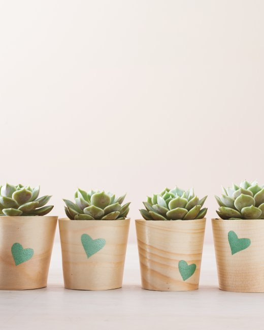 Martha Stewart Living DIY heart stenciled wooden cup succulent pot planters