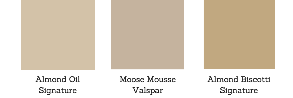 Toasted Almond Pantone Paint Color