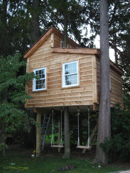 Treehouse roof tree house roof for How to build a treehouse roof