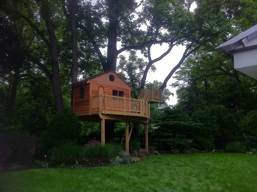 Would you build a treehouse in your backyard? Let us know in the