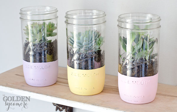 The Golden Sycamore diy painted mason jar planters