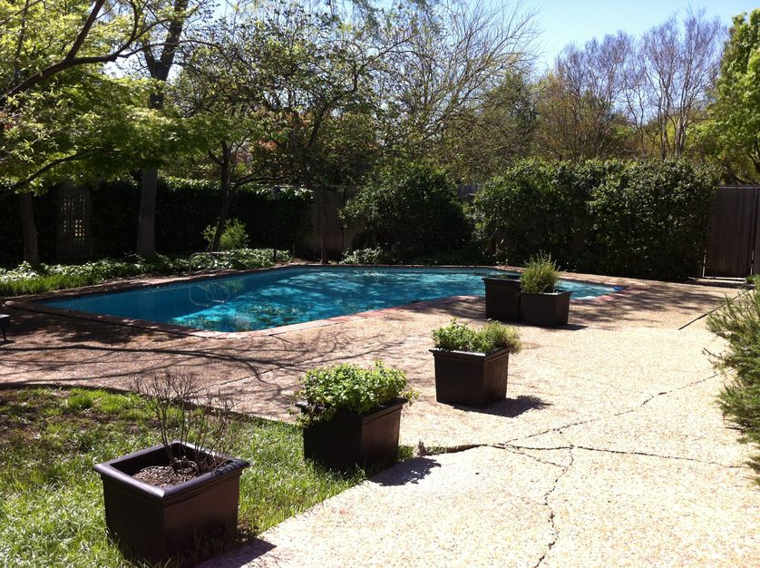 Before And After A Modern Backyard Garden And Pool
